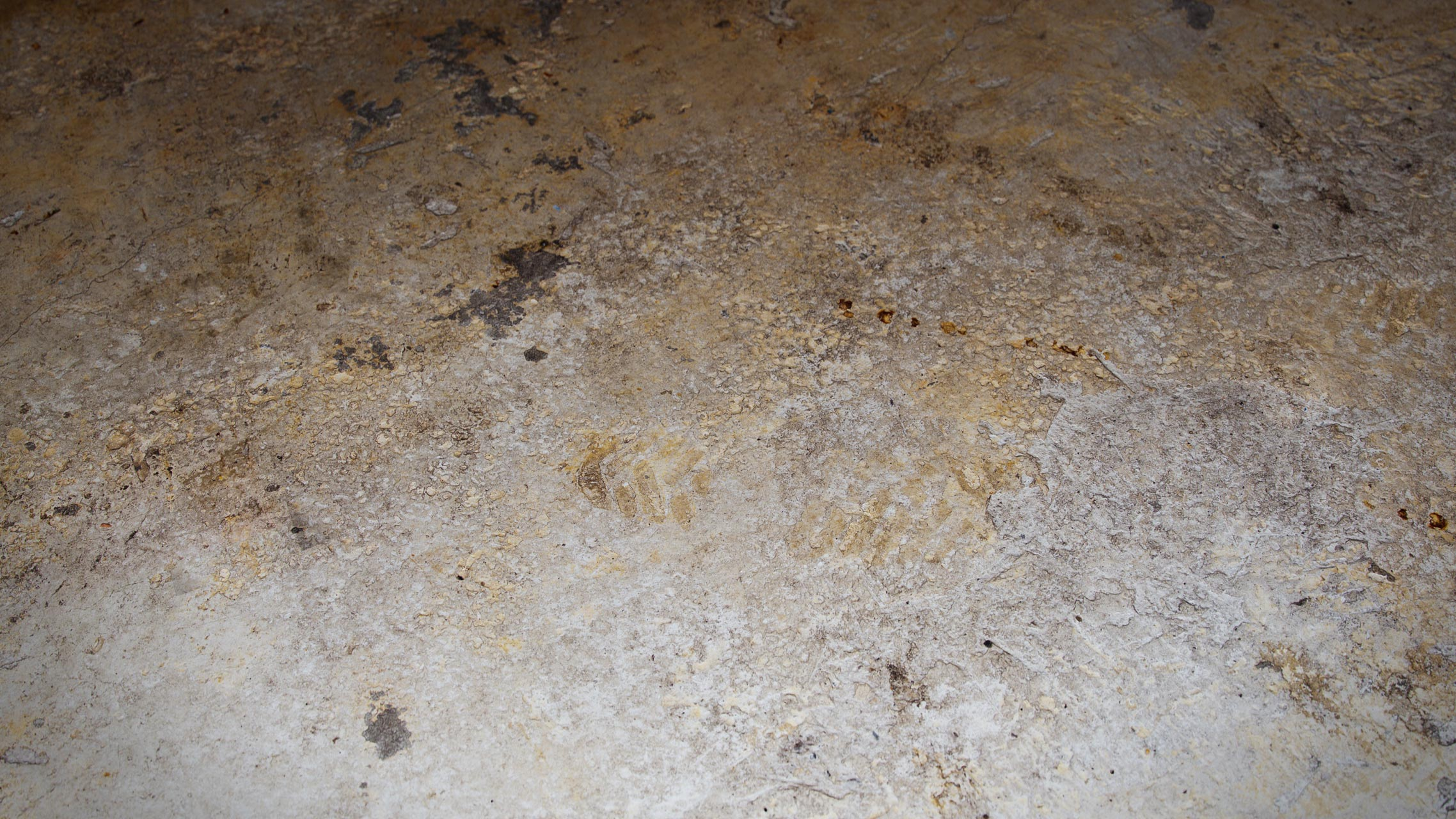 The image shows a bare concrete floor render made using Friendly Shade textures