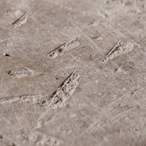 The image shows a rough concrete textured floor render made using Friendly Shade textures